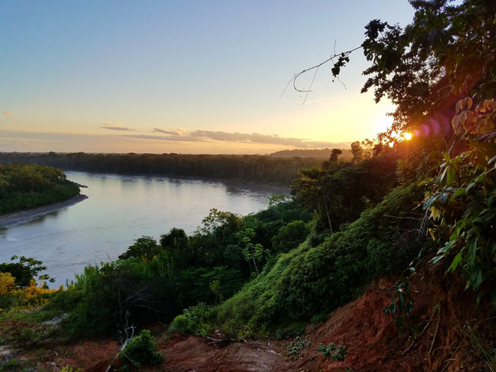 A photograph taken by Eve Kary during a faculty-led study abroad program to the Los Amigos Biological Research Station in the lowland Amazon forest in Peru.
